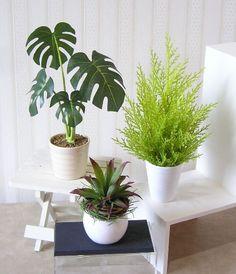 miniature fake plants