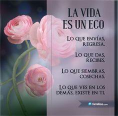 La vida es un eco.