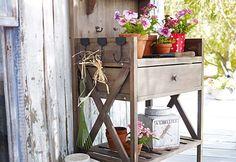 Jardinería orgánica para cuidar tus plantas