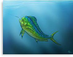 """Canvas Print Via Redbubble ••• """"El Dorado"""" Mahi Mahi   Dolphin Fish art by Amber Marine ••• AmberMarineArt.com •••"""