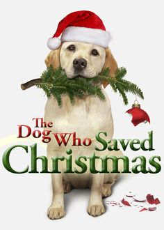 The Dog Who Saved Christmas - The Bannister family has little hope that their rambunctious new dog will protect the house from burglars -- but he just might prove them wrong!