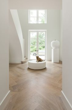 parquet flooring Match the skirting board to the floor- Abbinare il Battiscopa al Pavimento Match the skirting board to the floor - Home, House Design, Flooring, Interior, Wood Interiors, House Flooring, White Wood Floors, Floor Design, House Interior
