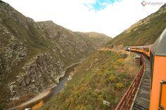PASSEIO DE TREM NA NOVA ZELÂNDIA: TAIERI GORGE RAILWAY