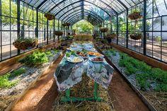 Garden Visit: Behind the Scenes at Babylonstoren - Gardenista