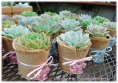 Cute Succulent baby shower favors with little charms.