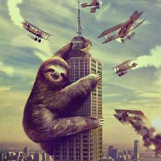 King Sloth Art