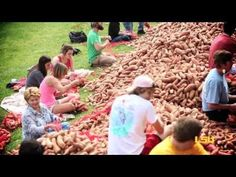 ▶ Volunteer Week - Potato Drop - student volunteers help sort and bag potatoes to benefit the Greater Baton Rouge Food Bank. Student Volunteer, Food Bank, Lsu, Volunteers, Dog Food Recipes, Benefit, Potatoes, Drop, Pets