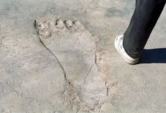 Lord Hanuman's Giant Footprints throughout Asia Aug 2015 Giant Footprint at Lepakshi, Andhra Pradesh Most people are familiar with Lord Hanuman. Ancient Aliens, Ancient History, Paranormal, Nephilim Giants, Giant Skeleton, Ancient Mysteries, Unexplained Mysteries, Ancient Artifacts, Cryptozoology