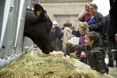 the great agricultural swindle by Herbi Ditl, via Flickr
