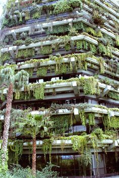 Garden Overgrown plants/jungle on a building, this looks perfect. I want to live there.Overgrown plants/jungle on a building, this looks perfect. I want to live there. Green Architecture, Landscape Architecture, Barcelona Architecture, Building Architecture, Sustainable Architecture, Contemporary Architecture, Landscape Design, Garden Design, Abandoned Buildings