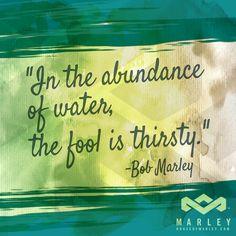 """In the abundance of water, the fool is thirsty."" - Bob Marley #BobMarley"