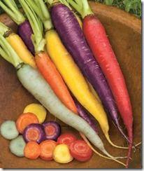 rainbow veggie garden/heirloom carrots
