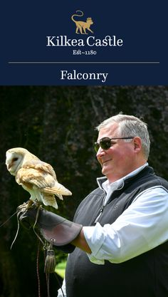 At Kilkea Castle, we provide an unforgettable falconry experience for groups, families and individuals.