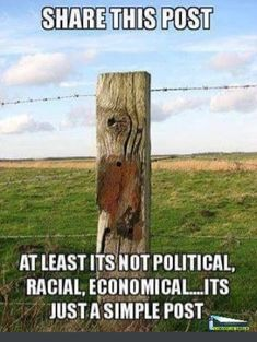 Share This Post At least it's not political, racial, economical.it's just a simple post. Funny Picture Quotes, Photo Quotes, Funny Photos, Hunting Humor, Funny Memes, Jokes, Hilarious, Funny Couples, E Cards