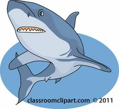 shark_swimming-06A.jpg (350×321)