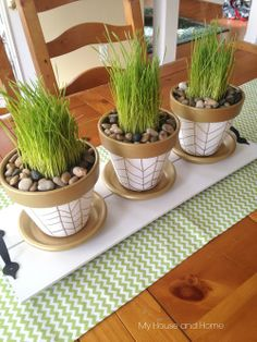 Spring pots with grass- My House and Home