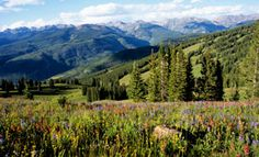 Slifer Smith and Frampton Real Estate | Vail, Colo.