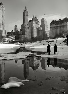 """A magnificent shot that's truly timeless. February 12, 1933. """"New York City views. Plaza buildings from Central Park."""" The Savoy Plaza and Plaza hotels. Photo by Samuel H. Gottscho"""