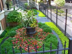 City front yard, no grass. Boxwood, bluestone chip, ground covers. Chicago, IL