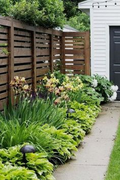Front Garden Design 14 Backyard Privacy Landscaping Ideas, Most Nicest and also Sweetest Too Privacy Fence Landscaping, Backyard Privacy, Backyard Fences, Backyard Landscaping, Landscaping Software, Garden Fences, Garden Privacy, Luxury Landscaping, Privacy Fences
