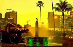 """See amazing photos of Beverly Hills and share yours too, by joining our new """"Love Beverly Hills"""" Flickr Group: http://www.flickr.com/groups/lovebeverlyhills/ (Photo by lostinangeles via Flickr)"""