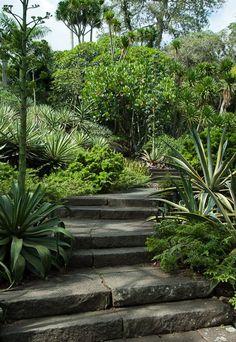 Gardens of Roberto Burle Marx, Barra de Guaratiba, Rio de Janeiro; photo by Malcolm Raggett
