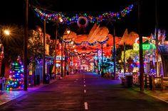 Christmas Photography Tips - Disney Tourist Blog
