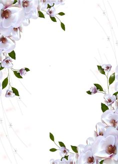 Transparent Photo Frame Beautiful Flowers