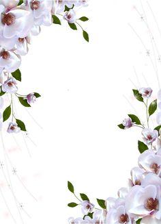 Transparent Photo Frame Beautiful Flowers