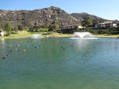 Welk Resort, Escondido, California.