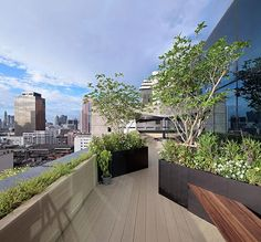 An eco-friendly roofing has quite a few positive factors at monetary, ecological and group rank. Rooftop Terrace, Terrace Garden, Rooftop Gardens, Pergola Shade, Diy Pergola, Pergola Kits, Pergola Ideas, Landscape Architecture, Landscape Design
