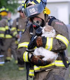 Prevent Your #Pet From Starting Fires & Keep Them Safe! #NationalPetFireSafetyDay #GCVS #Houston #fires