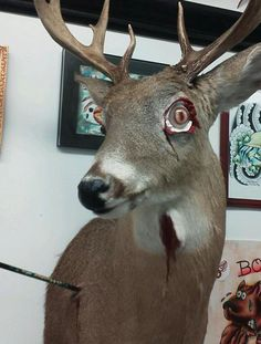 Zombie deer? Yes I like it very much.