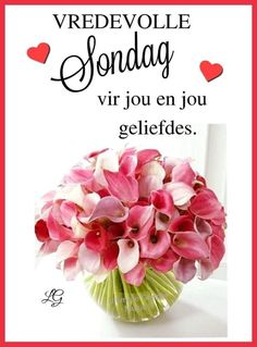 Lekker Dag, Good Night Greetings, Goeie Nag, Goeie More, Afrikaans Quotes, Good Morning Good Night, Special Quotes, Happy Sunday, Place Card Holders