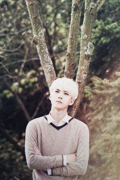 Sehun for Nature Republic Chanyeol Baekhyun, Park Chanyeol, Exo Nature Republic, Rapper, Kris Exo, Kim Minseok, Hunhan, Exo Members, Yixing