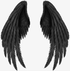 Black wings PNG image with transparent background Angel Wings Png, Angel Wings Drawing, Demon Wings, Raven Wings, Black Angel Wings, Black Angels, Lucifer Wings, Tattoo Son, Back Tattoo