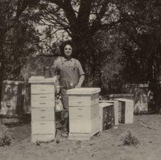 Vintage hives