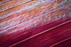 Paria Sandstone / Vermillion Cliffs Wilderness, Arizona