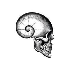 Tattify Golden Ratio Skull Temporary Tattoo - Thought Patterns (Set of 2)