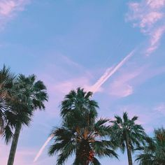 Touch the sky., How to Be a Popular Girl Popular Girl, Pony, Clouds, Touch, Summer, Outdoor, Instagram, Purple, Beauty