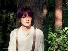 Nct Life, Jisung Nct, Na Jaemin, K Idol, Jelsa, Winwin, Handsome Boys, Hd Photos, Taeyong