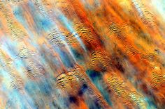 "Africa from space, via Astronaut Scott Kelly: ""Earth without art is just Eh. #YearInSpace @StationCDRKelly"""