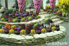 Projekt ogrodu:ogród i skalniak - Wiosna