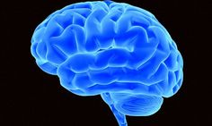How exercise can make your BRAIN bigger