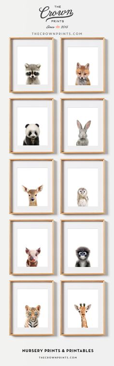 Baby animal nursery prints - Nursery wall decor, Woodland nursery theme - from The Crown Prints
