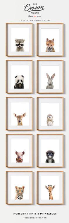 Baby animal nursery prints - Nursery wall decor, Woodland nursery theme - from The Crown Prints