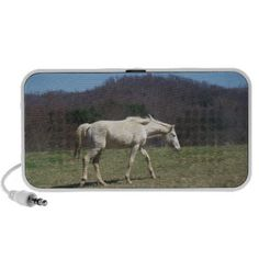 Lone Pretty White Horse Speakers!  #Zazzle #store #gifts #presents #ideas #christmas #holiday #shopping http://www.zazzle.com/dww25921*