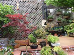 BBY 2010 - Jan's Garden - Urban Intensive