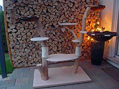 natur kratzbaum katzenbaum naturkratzbaum echtholz sisal. Black Bedroom Furniture Sets. Home Design Ideas