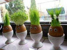 kleine Vasen für Kresse